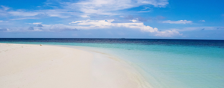 Expert Insights: Maldives