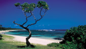 3nts Cape Town & 7nts Mauritius