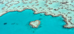 The Great Barrier Reef & Queensland Tours
