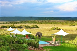 Shamwari Private Game Reserve; Long Lee Manor