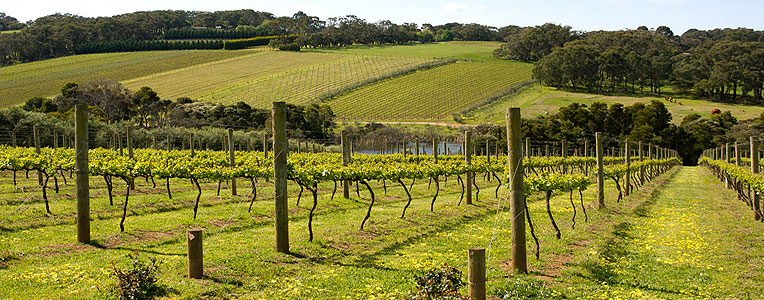 Great Aussie Road Trips: Victoria- Part Two