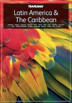Latin America & The Caribbean 2020