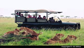 7 day Kenya Classic Tour & 5nts Mombasa Beach