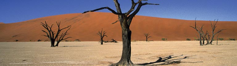 Namibia Self Drive Holidays