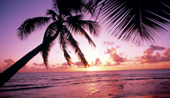 2nts New York & 7nts Barbados