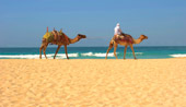 3nts Dubai Beach & 5nts Boutique Cape Town