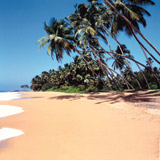 4-day Highlights of Sri Lanka Independent Tour & 7nt Beach Extension