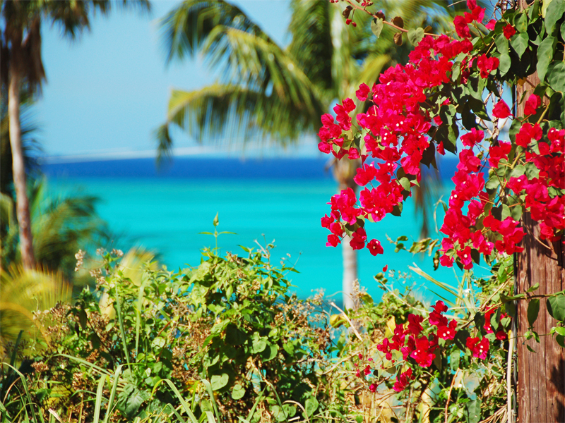 Southern Caribbean Islands Weather