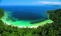 Brilliant Borneo