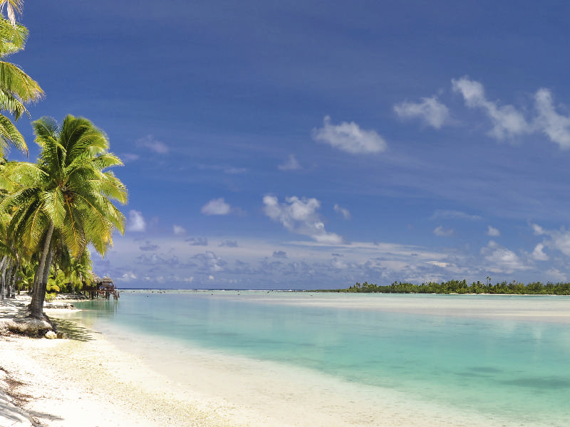 Cook Island Holiday July