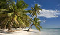 =The white sand beaches of the Dominican Republic