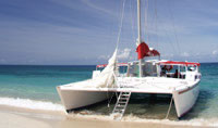 Catamaran Highlights