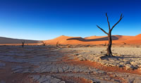 The deserts of Namibia
