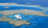 Barrier Reef Highlights