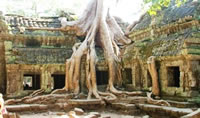 Siem Reap Highlights