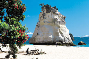 3nts Auckland, 2nts Bay of Islands & 2nts Coromandel