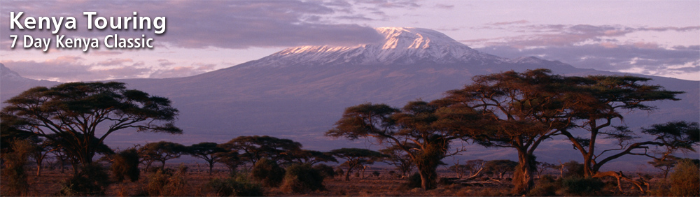 Independent Amp Group Kenya Tours Packages In 2018 2019 From Travelbag