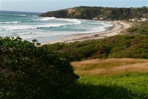 2 Day Kangaroo Island 4WD Tour