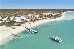 11 Day Northbound to Ningaloo - Self Drive