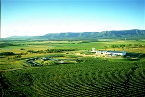Hunter Valley Resort