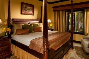 Butler Village Honeymoon Oceanview One Bedroom Poolside Villa Suite
