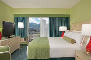 City View King Bed Room