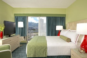 Mountain View King Bed Room