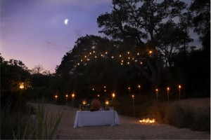 Thornybush Nkaya Lodge