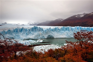 The Perito Moreno Glacier - click to expand