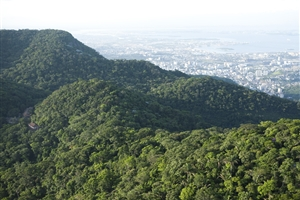 Tijuca National Park - click to expand
