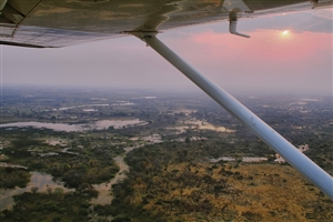 10 Day Botswana Safari