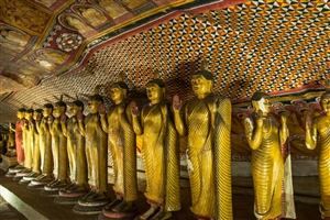 8 Day Discover Sri Lanka