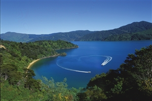 Marlborough Sounds - click to expand
