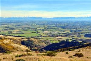 Canterbury Plains - click to expand