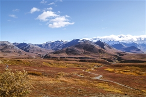 Denali National Park - click to expand