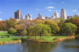 Central Park - click to expand