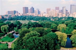 7 Day Boston, New York & Washington by Rail