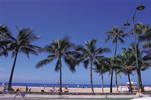Waikiki Beach - click to expand