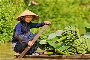 15 Day Vietnam with Sapa