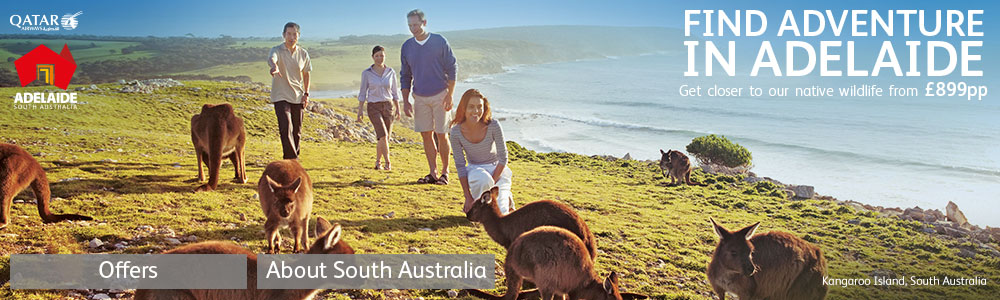 Find Adventure in Adelaide - Get closer to our native wildlife
