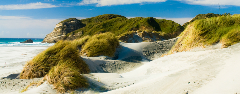 Waharariki Beach walk, New Zealand